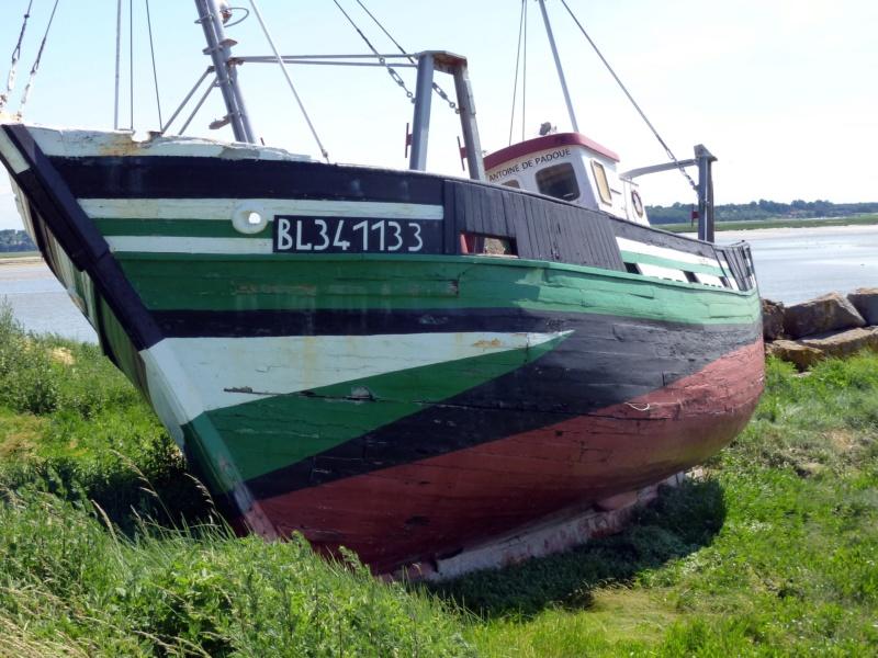 [VIE DES PORTS] Quelques bateaux de pêche (sur nos côtes Françaises) - Page 39 10424_10