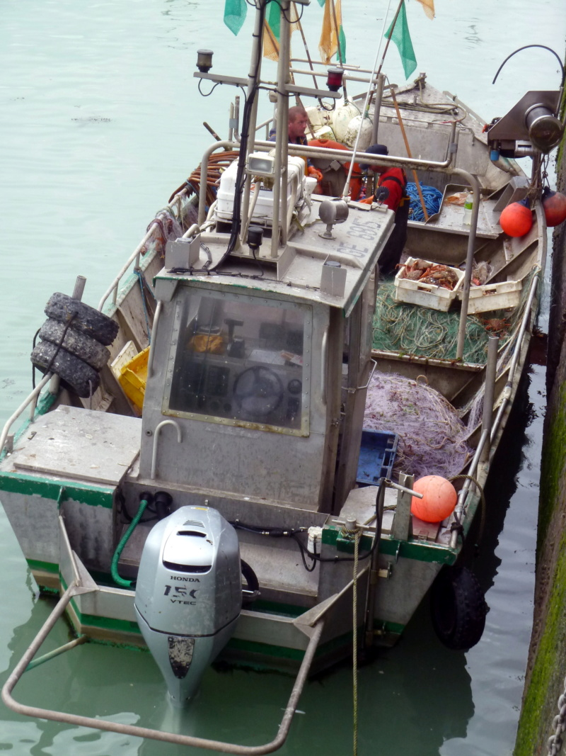 [VIE DES PORTS] Quelques bateaux de pêche (sur nos côtes Françaises) - Page 10 11817_10