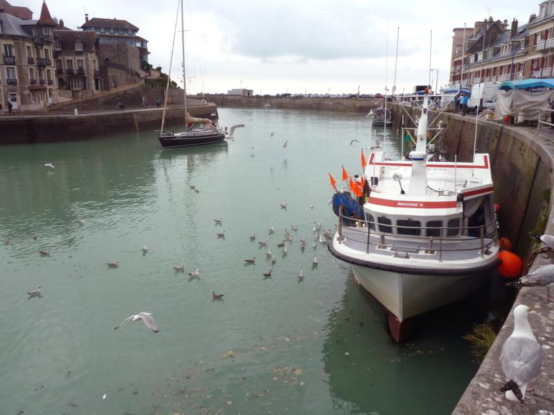 [VIE DES PORTS] Quelques bateaux de pêche (sur nos côtes Françaises) - Page 10 11824_10