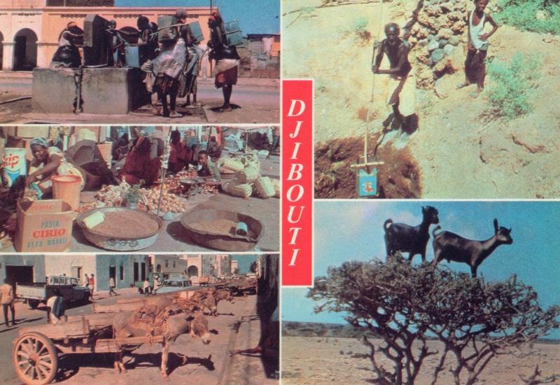 [Campagne] DJIBOUTI - TOME 1 - Page 26 Djibou23