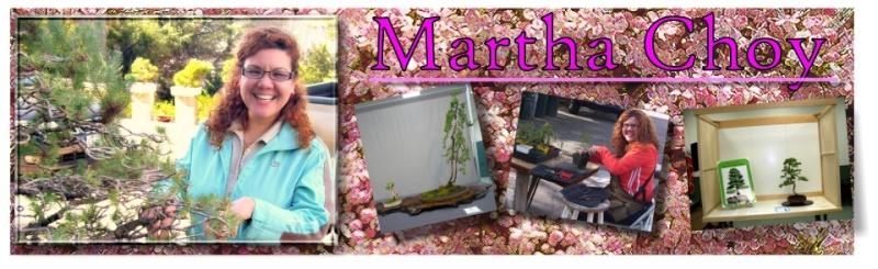 Martha Choy Project- Bonsai Study in Japan  Martha11