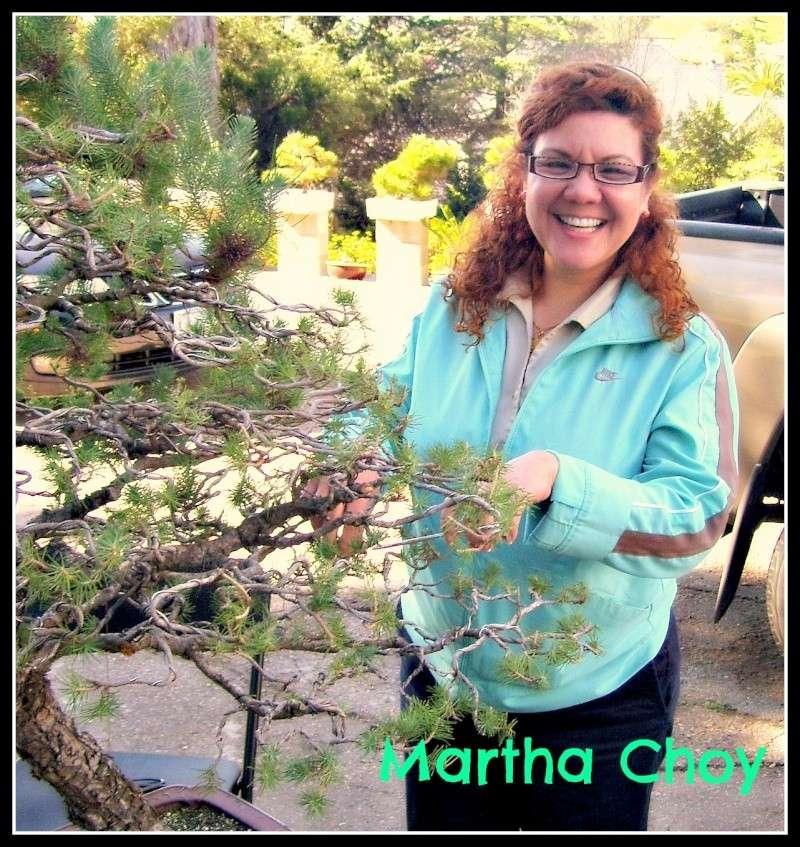 Martha Choy Project- Bonsai Study in Japan  Martha12