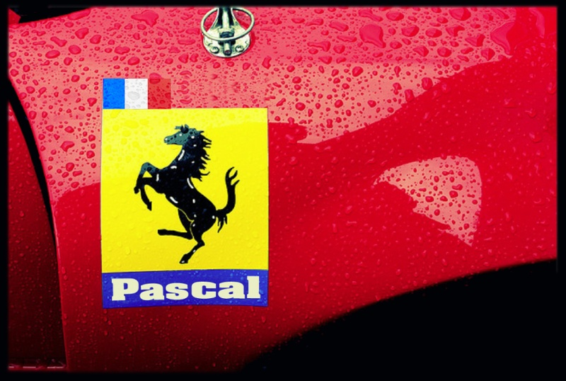 F.G. anniversaire Pascal10