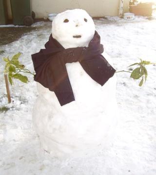 Le plus beau bonhomme de neige Bonhom11