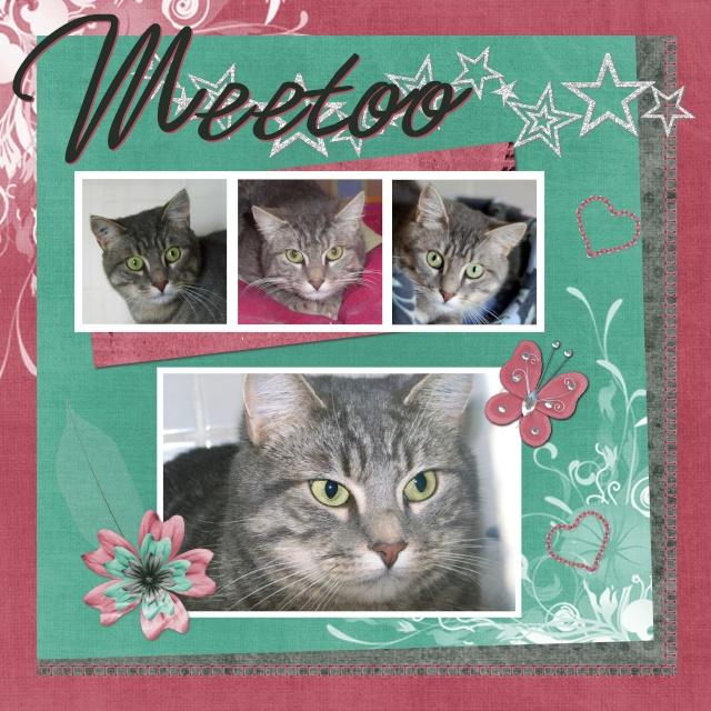 MEETOO (gris) Meetoo11