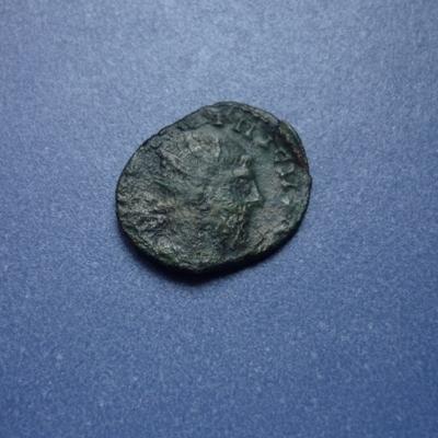 tetricus ? P1020719