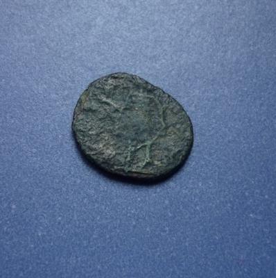 tetricus ? P1020721