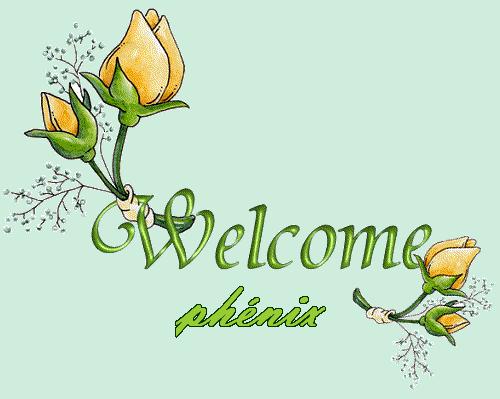 Bonjour ou Bonsoir de phénix Phanix12
