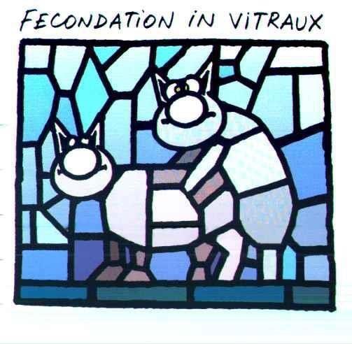 F.I.V Fiv10