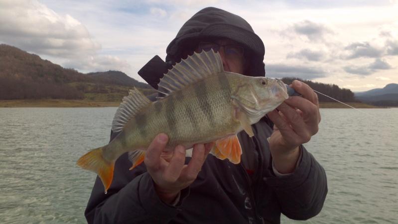 Votre pêche de Janvier 2013-021