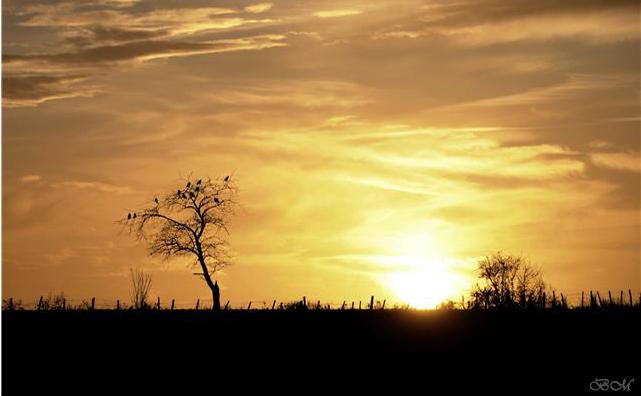 coucher de soleil Getatt11