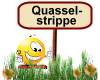 Quasselstrippe