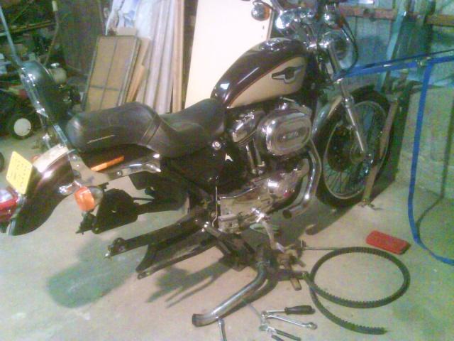 combien sommes nous en 1200 Sportster sur Passion-Harley Dsc00110
