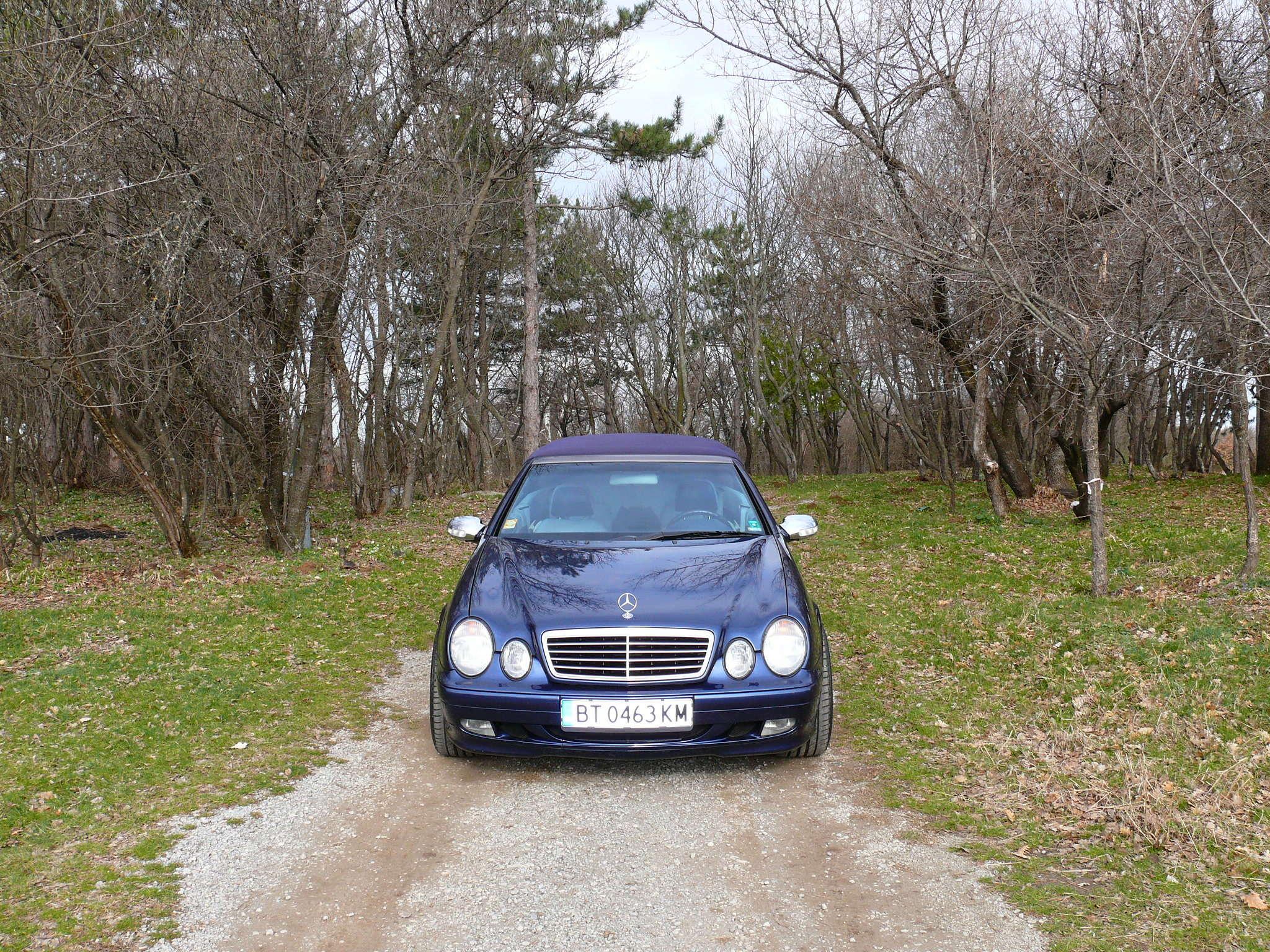 Mes voitures en photos STIHLMI16 ® - Page 12 P1060516