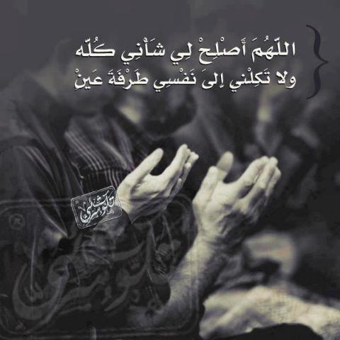 Marque ton passage au forum par une aya ou un hadith - Page 2 362_n11