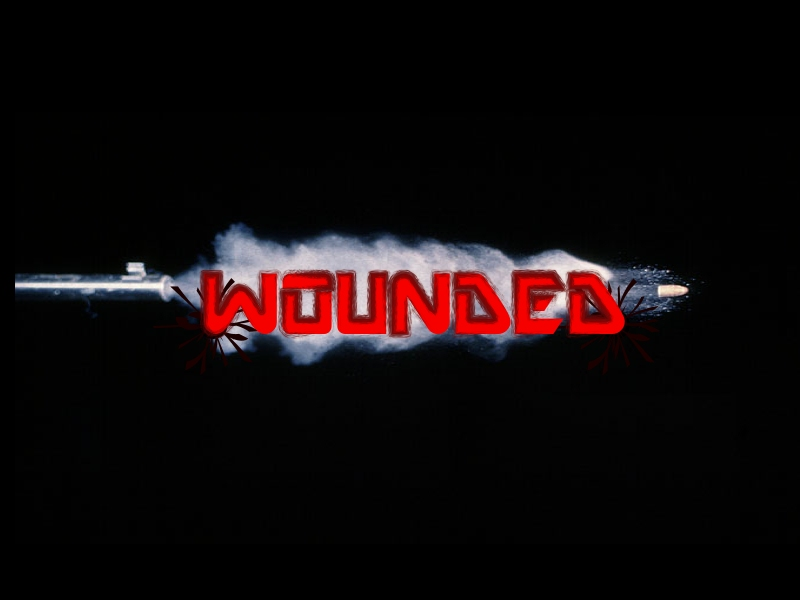 Wonded Logo Wounde11