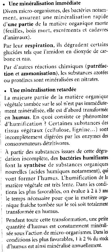 Décomposeurs, détrivores, transformateurs Humus_10