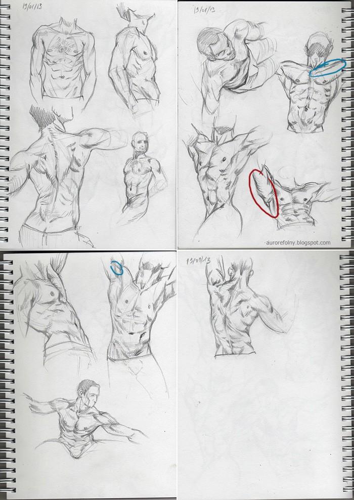 [defis] IM Training 1 - Page 6 Torses13