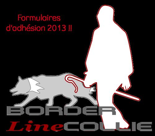 Adhésion BorderlineCollie et Nouvel An Adhasi14