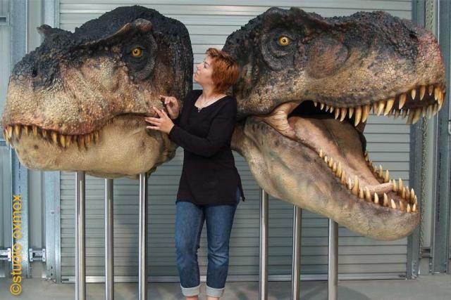 Petites choses diverses T-rex10