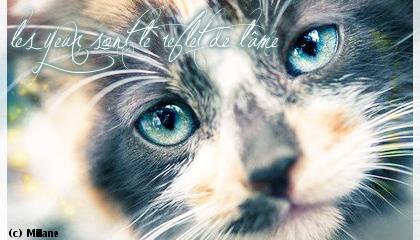 My World ♥ Melodi10