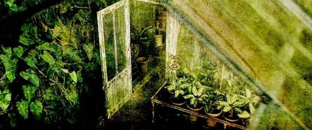 Greenhouse Four Four10