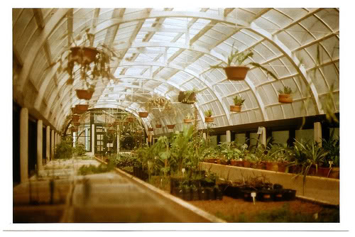 Greenhouse Two Two10