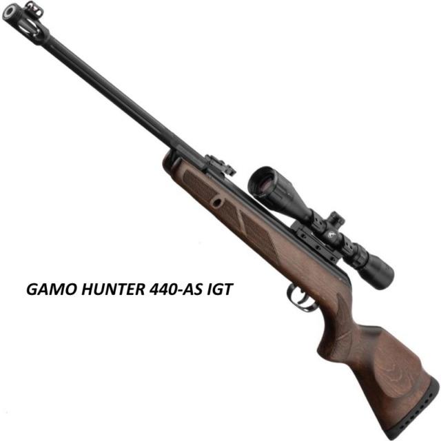 gamo hunter as igt 20 j Carabi12