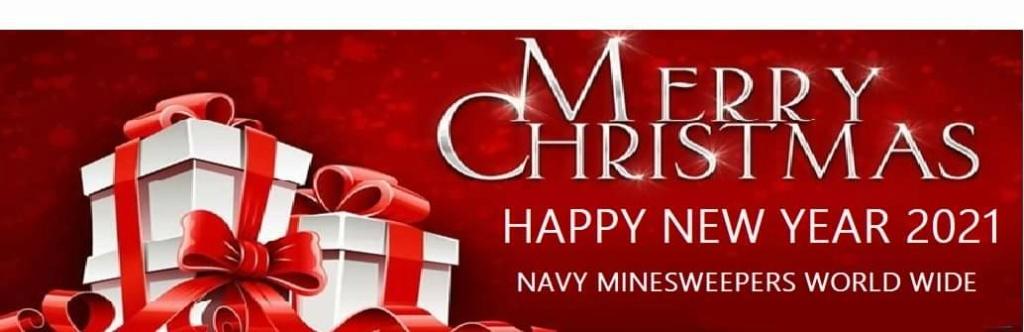 Meilleurs voeux pour 2021 Navy_x11