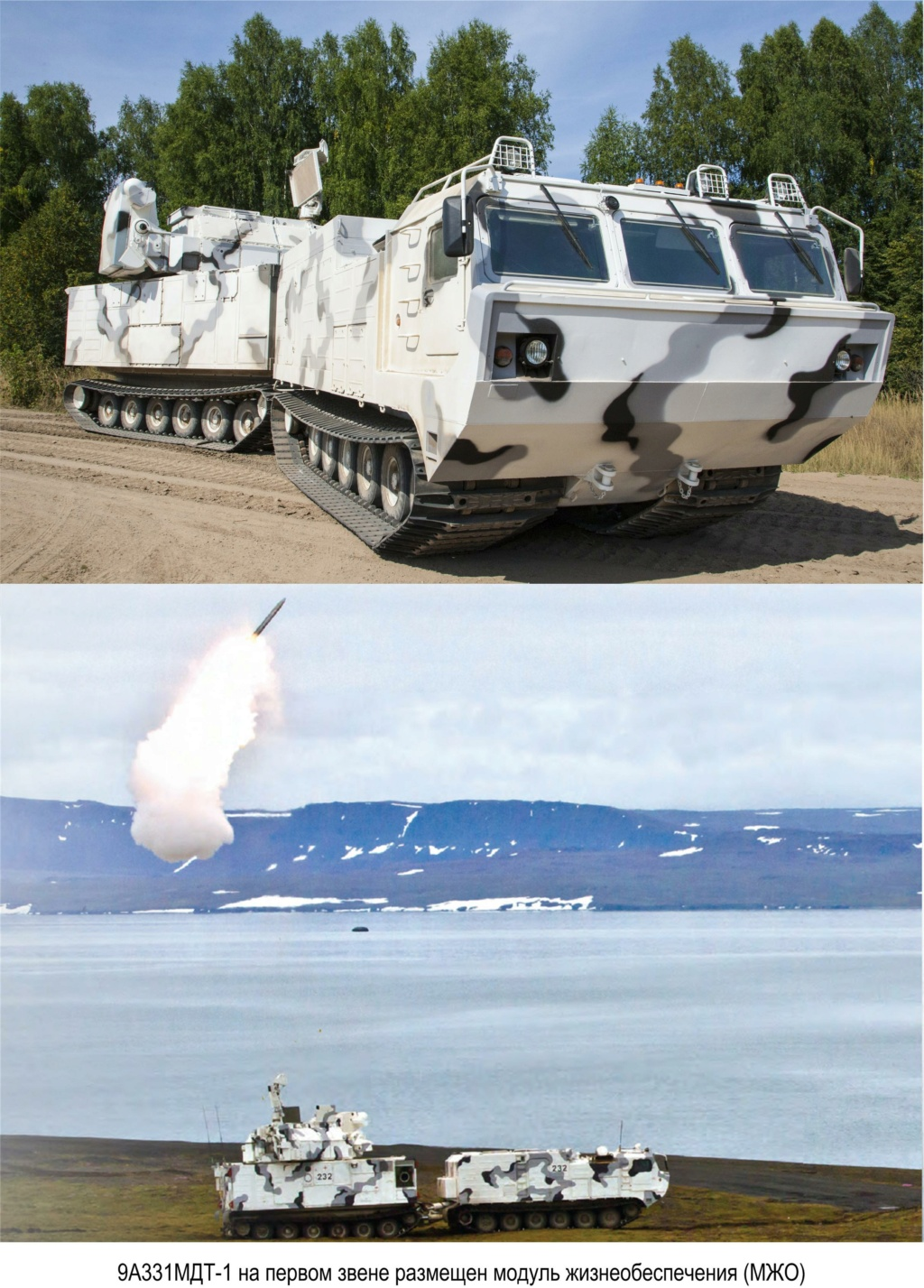TOR Air Defence system - Page 16 86931410