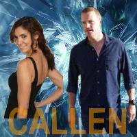 Aile NCIS Los Angeles Callen11