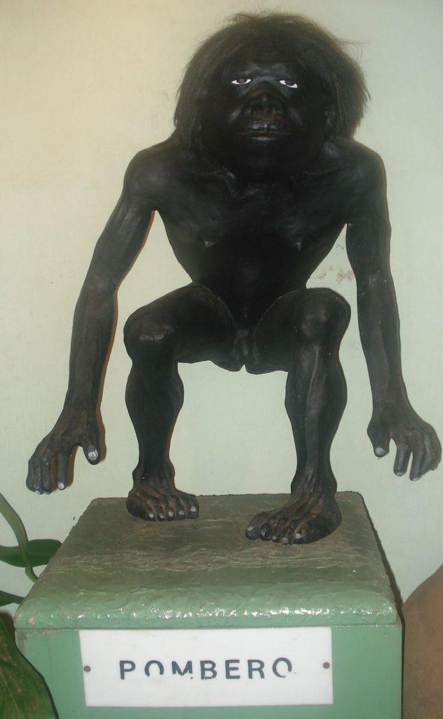 Pombero: Une Etrange créature 1200px11