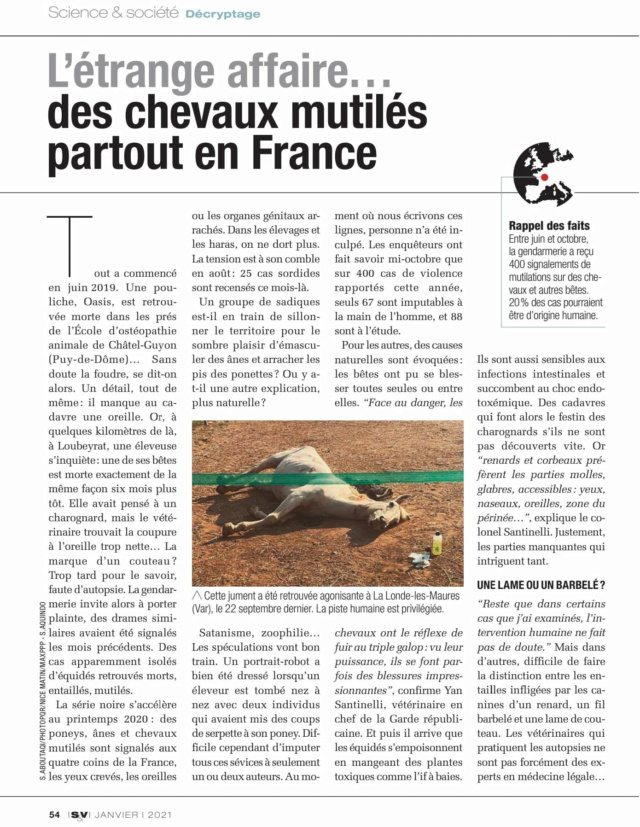 Mutilations Animales en France (2020) - Page 4 13456710