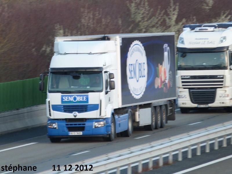 Senoble (Jouy, 89) P1050035
