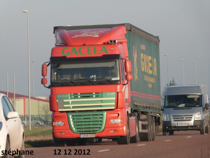 Gacela  (Irun) P1050156