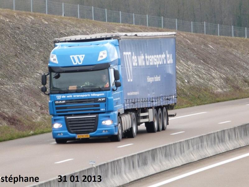 De Wit Transport (Hillegom) P1060133