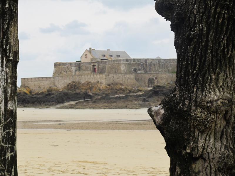 Saint-Malo [La cité Corsaire] - Page 31 Fort_n10