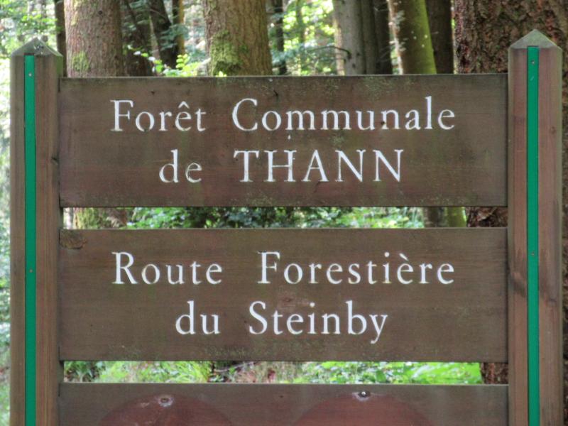 Les balades de Ninie (hors Bretagne) - Page 10 Route_10