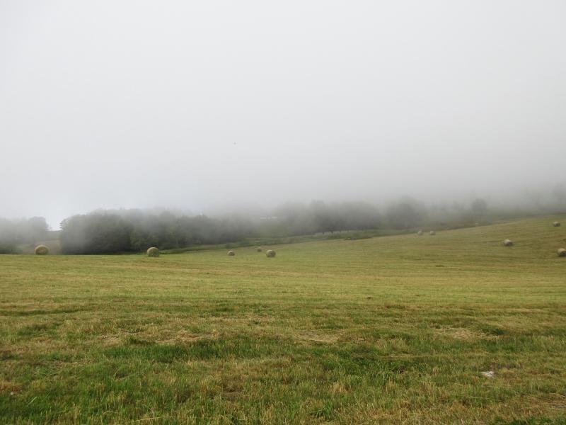 Les balades de Ninie (hors Bretagne) - Page 9 Vosges10