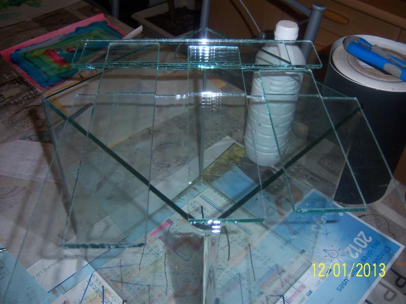 bricolage sur nano dennerle 20 litres. 101_3422