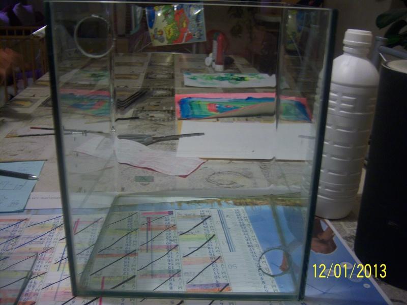 bricolage sur nano dennerle 20 litres. 101_3510