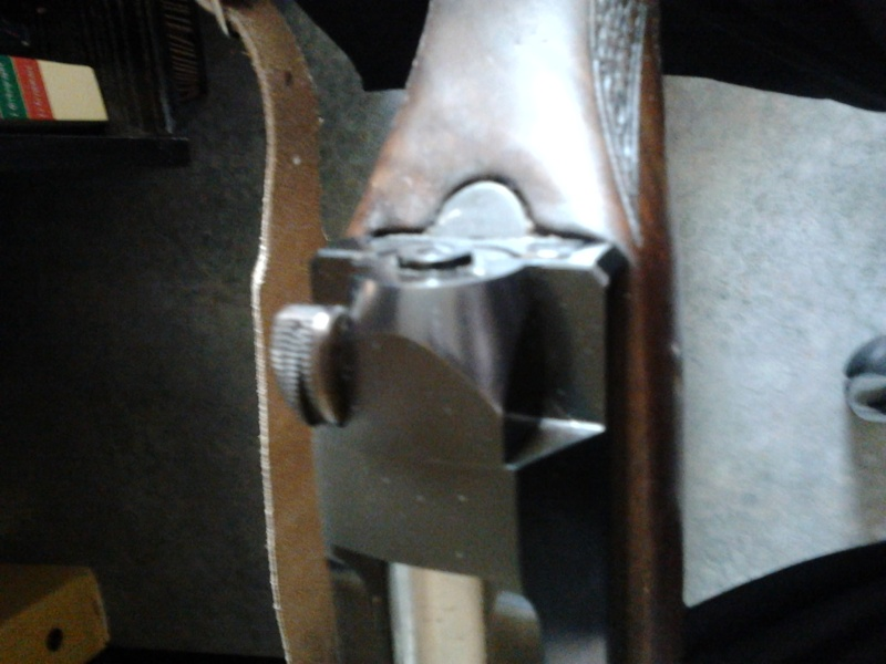Problème culasse Mauser 66 Photo011