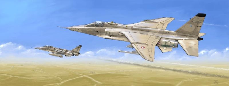 Avions Jaguar10