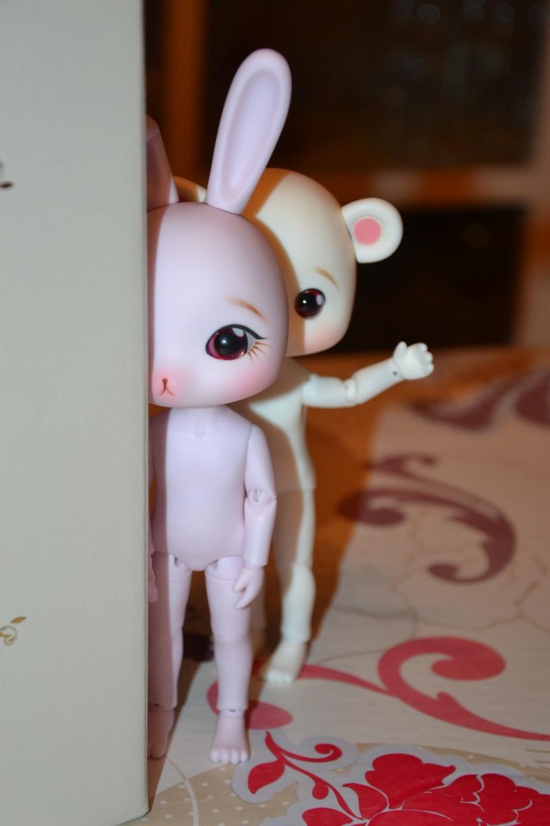 ♥ ♥ ♥ Présentation de ma Littlefée Bisou ♥ ♥ ♥ Page 15 ♥ - Page 3 Dsc_0511