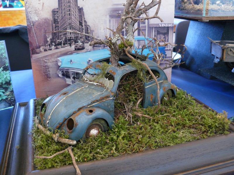 Ford 1937 Prit par la nature - Page 4 P1240810