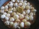 champignons à la sauce tomate.photos. Champi19