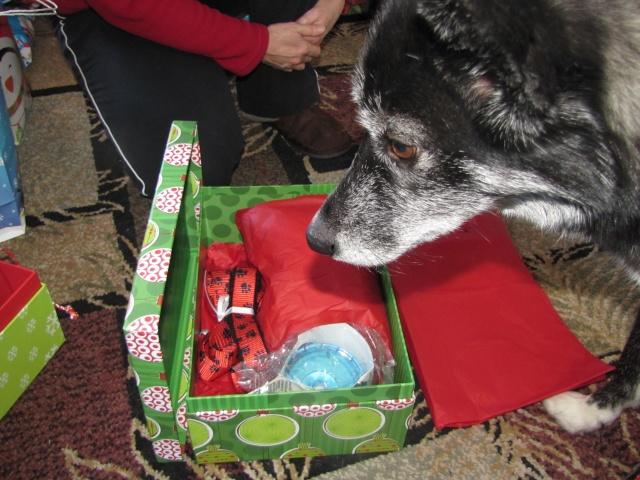2012 Secret Santa REVEAL  Img_3615