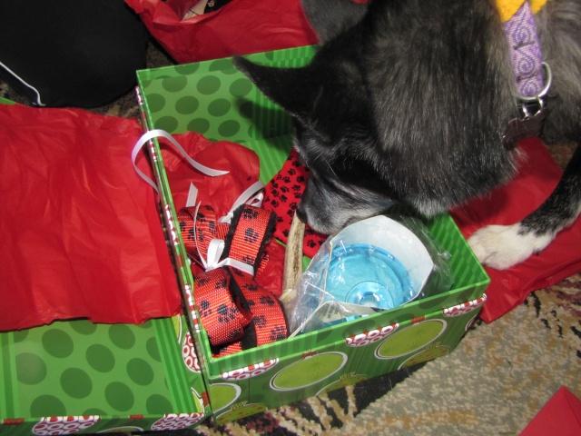 2012 Secret Santa REVEAL  Img_3616