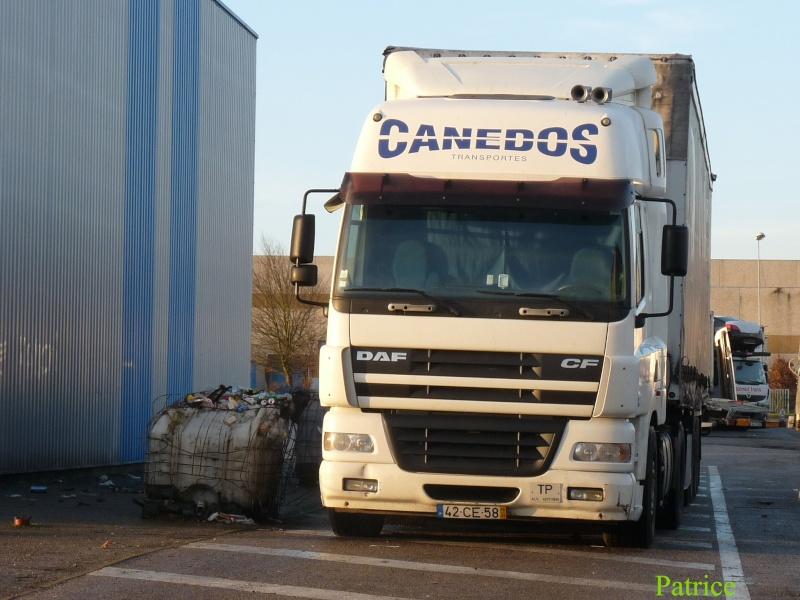 Canedos 004_co11