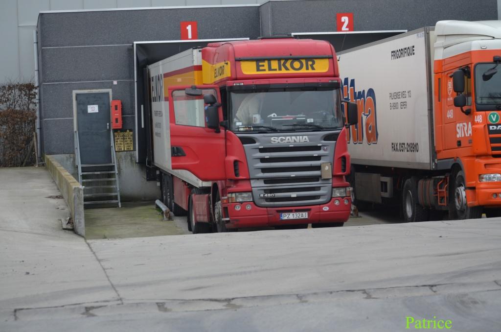 Elkor (Kleszczewo) 006_co25